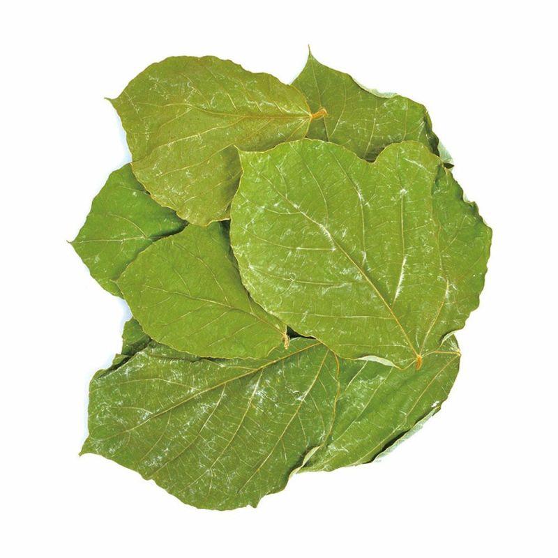 国産 乾燥葛の葉