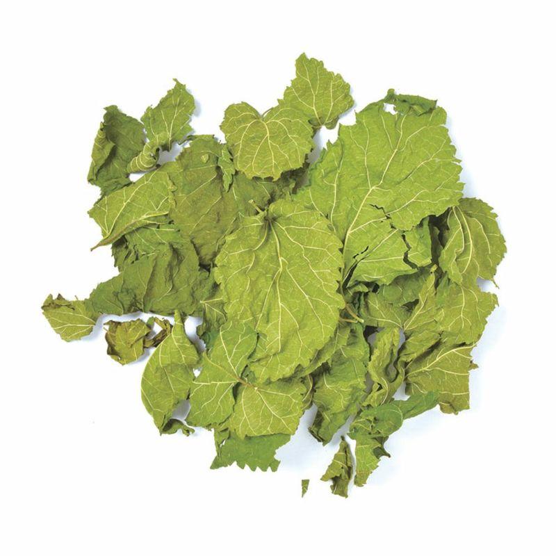 国産 乾燥桑の葉